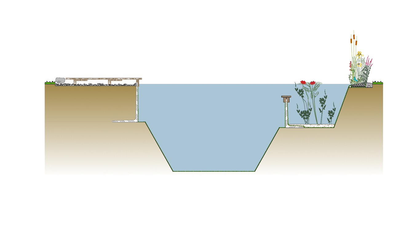 Il medium negli impianti di fitodepurazione a Piobesi Torinese: cos'è e a cosa serve?